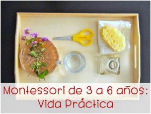 http://www.cursosmontessoriencasa.es/imchiii/