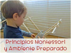 http://www.cursosmontessoriencasa.es/imchi/